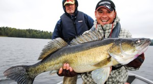 Fishing vacation in Sweden: Catch gigantic zander on one of our guided fishing tours on lake Bunn.