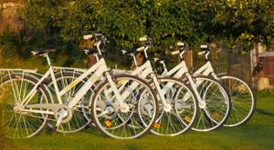 Fahrrad Vermietung: Mieten Sie 4 Fahrräder an unseren Ferienhäusern in Schweden.