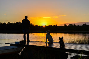 Das Ferienhaus Lönneberga liegt in Alleinlage 500m Luftlinie vom See entfernt, hat einen Zaun bzw. ein eigezäuntes Grundstück und ist so ideal für einen Urlaub mit Hund.